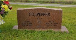 Billie Jo <I>Powers</I> Culpepper