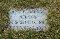 Amy Florence Nelson