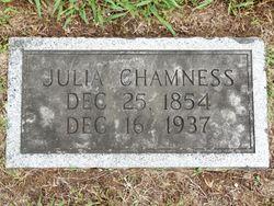 Julia Ann <I>Kirk</I> Chamness