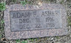 Adam R Asher