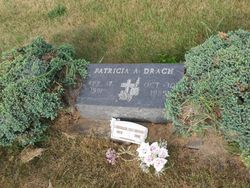 Patricia A Drach 1951 1985
