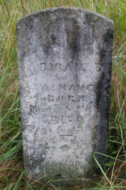 Abigail Barbara D. <I>VanHuss</I> Nave