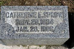 Catherine E. <I>Schenfler</I> Sprow