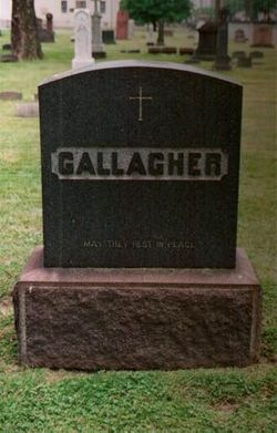 Thomas P Gallagher