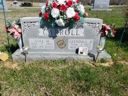 Avel Carroll
