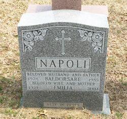 Baldorsare Napoli
