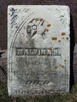 Malvina H <I>Sanborn</I> Newell