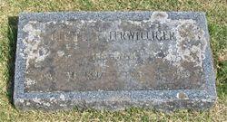 Cecile <I>Titus</I> Terwilliger