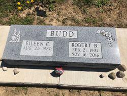 Robert Budd