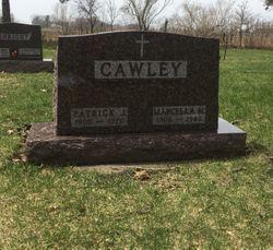 Patrick J Cawley