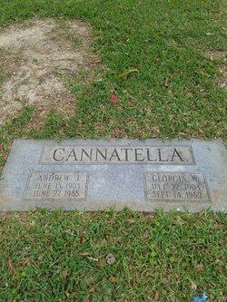 Andrew John Cannatella