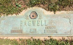 """Nancy """"Nannie"""" <I>Baldwin</I> Bagwell"""