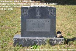 Mary Ida <I>Johnson</I> Watlington