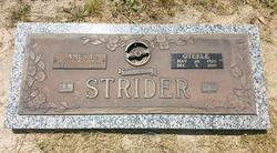 James F Strider