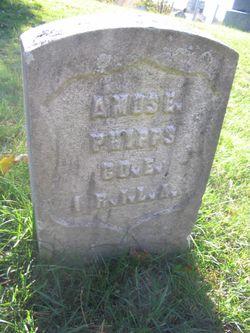 Amos Eugene Phipps