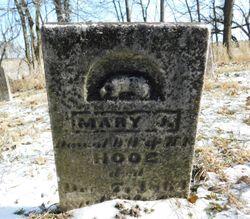 Mary J Hooe