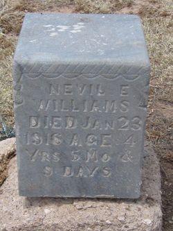 Nevil Earnest Williams