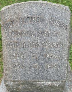 Lucy Addison <I>Sprigg</I> Dos Passos