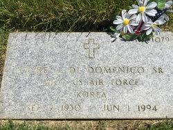 Fiore J Di Domenico, Sr