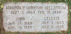 John Hellstrom