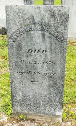 Jedidiah Bushnell