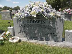Iran Law Godwin