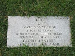 David S Snyder, Sr