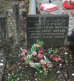 Violet Susan Adams