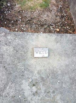 William John Palmer
