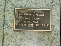 Andrew J Feeley