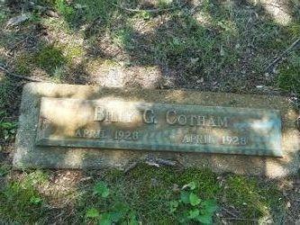 Billy G Cotham