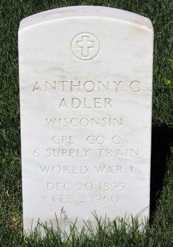 Anthony C Adler