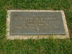 Joseph M D'Amico