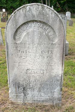 Joseph Adams, Jr