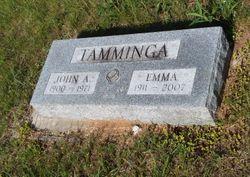 John A Tamminga 1900 1971