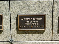 Andrew F Cuskelly