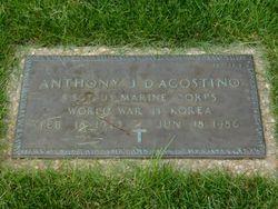 Anthony J D'Agostino