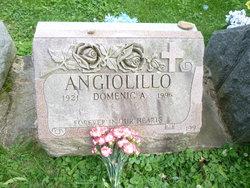 Domenic A. Angiolillo