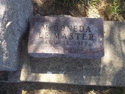 M. Odneda Lemaster