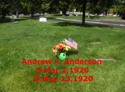 Andrew Franklin Anderson
