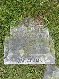 Elizabeth Ann <I>Wentworth Adams</I> Adams