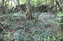 Butts-Martin Farm Cemetery