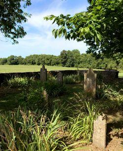 Cheairs Cemetery