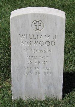 William J Bigwood