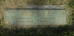 Mary Fern <I>Jones</I> Wolfe