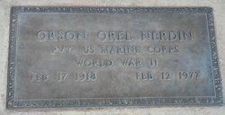 Orson Orel Nerdin