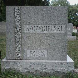 David W Szczygielski