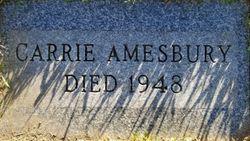 Carrie Wheaton <I>Blackmar</I> Amesbury