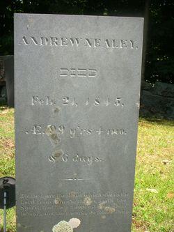 Andrew Nealey