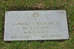Anthony C Bicocchi, Jr